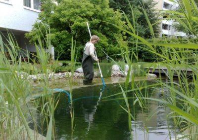 Gartenbau Hiebler Teichpflege
